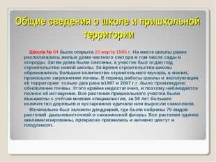Общие сведения о школе и пришкольной территории  Школа № 64 была открыта 23