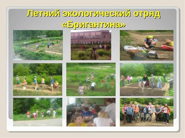 Летний экологический отряд «Бригантина»