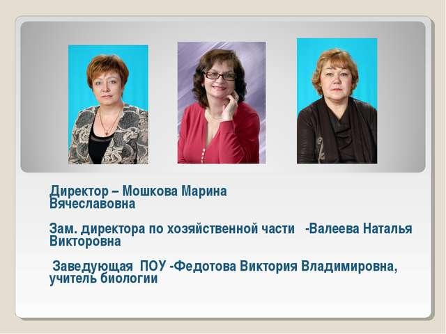 Директор – Мошкова Марина Вячеславовна Зам. директора по хозяйственной части...