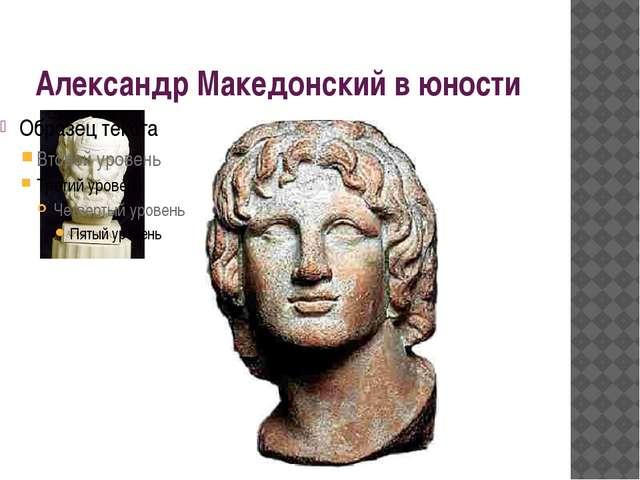 Александр Македонский в юности
