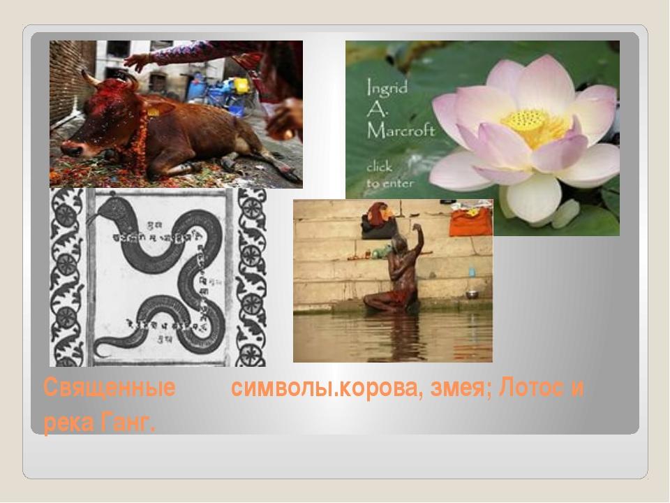 Священные символы.корова, змея; Лотос и река Ганг.