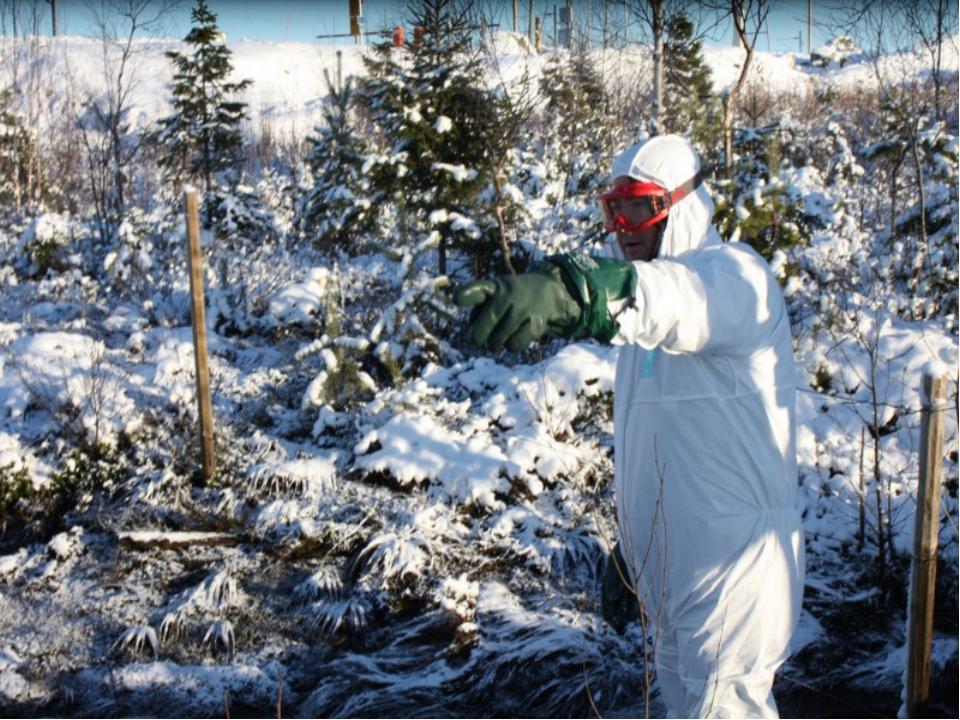 Экологические катастрофы в россии и за рубежом