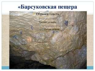 «Барсуковская пещера