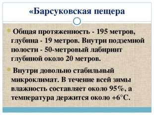 «Барсуковская пещера Общая протяженность - 195 метров, глубина - 19 метров. В