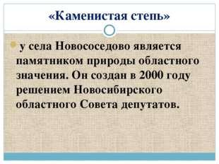 «Каменистая степь» у села Новососедово является памятником природы областного
