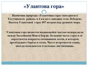 «Улантова гора» Памятник природы «Улантовая гора» находится в Тогучинском рай