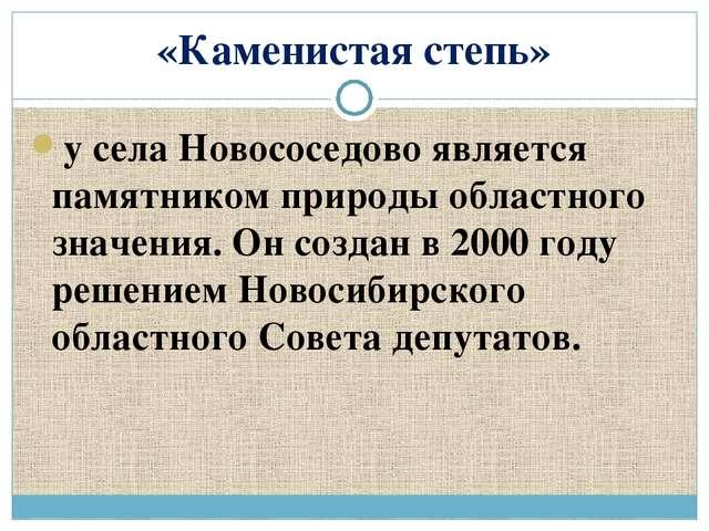 «Каменистая степь» у села Новососедово является памятником природы областного...