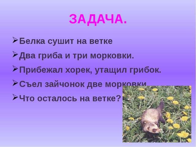 ЗАДАЧА. Белка сушит на ветке Два гриба и три морковки. Прибежал хорек, утащил...
