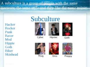 A subculture is a group of people with the same interests, the same style and