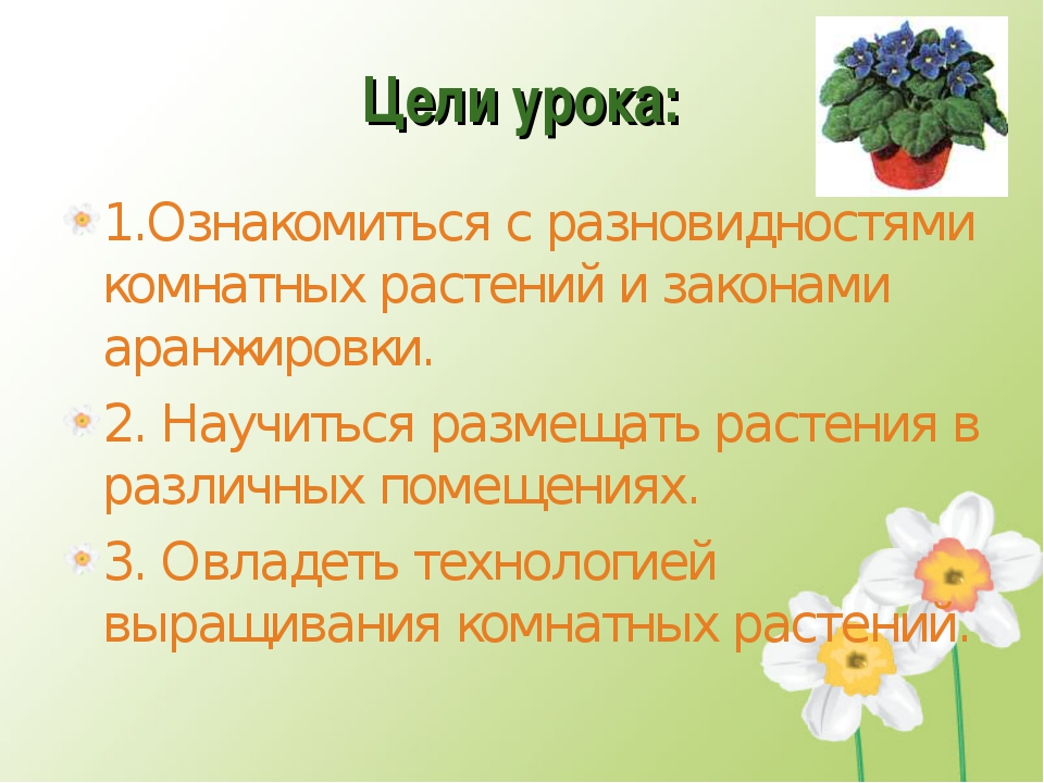 Цели урока: 1.Ознакомиться с разновидностями комнатных растений и законами ар...