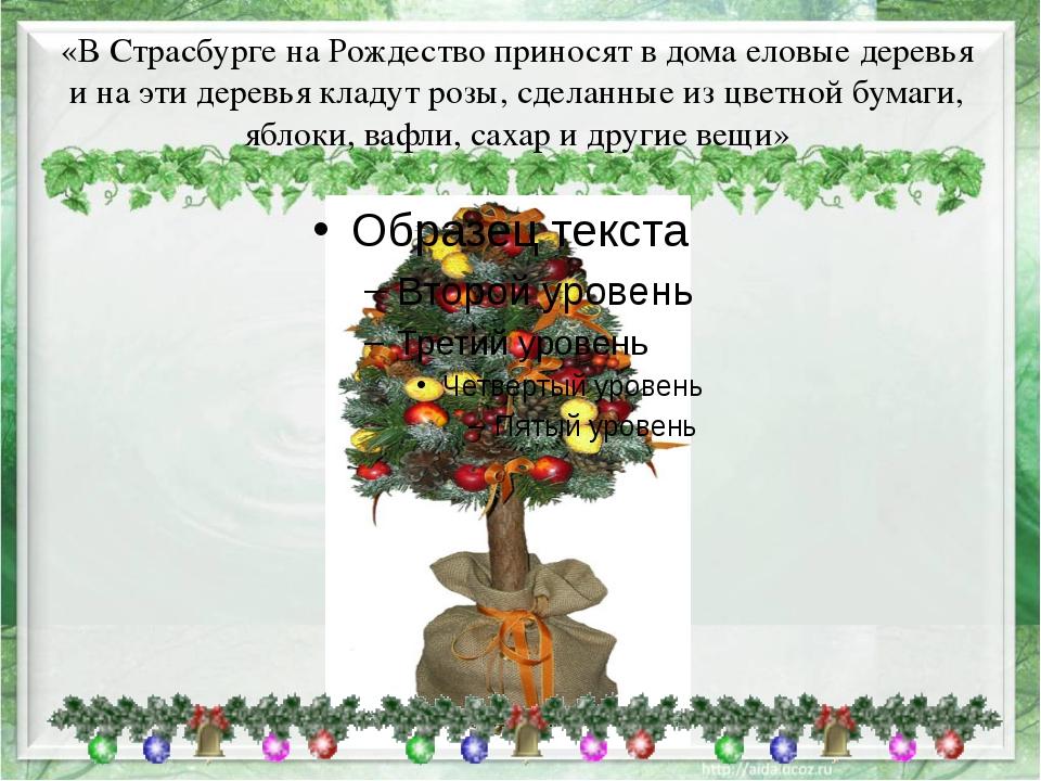 «В Страсбурге на Рождество приносят в дома еловые деревья и на эти деревья кл...