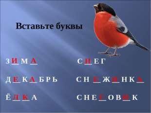 Вставьте буквы З __ М __ С __ Е Г Д __ К __ Б Р Ь С Н __ Ж __ Н К __ Ё __ __