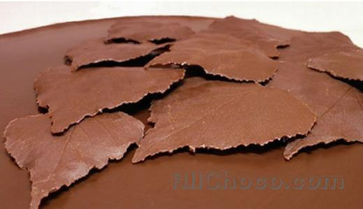 Украшения из шоколада для торта