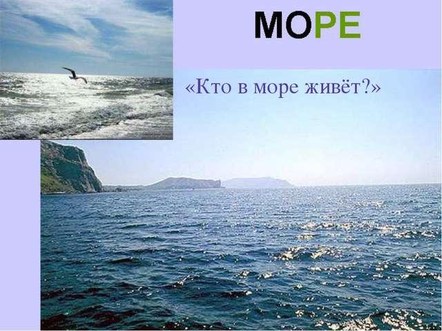 «Кто в море живёт?»