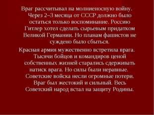 Враг рассчитывал на молниеносную войну. Через 2–3 месяца от СССР должно было