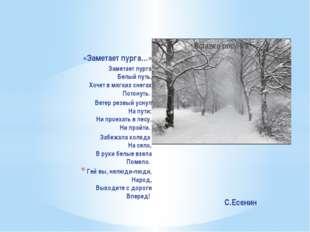 «Заметает пурга…» Заметает пурга Белый путь, Хочет в мягких снегах