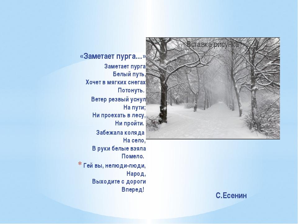 «Заметает пурга…» Заметает пурга Белый путь, Хочет в мягких снегах ...