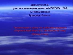 Давыдова И.В. учитель начальных классов МБОУ СОШ №2 г. Новомосковск Тульская