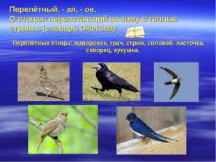 Перелётный, - ая, - ое. О птицах: перелетающий на зиму в тёплые страны. (слов