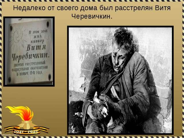 Недалеко от своего дома был расстрелян Витя Черевичкин.