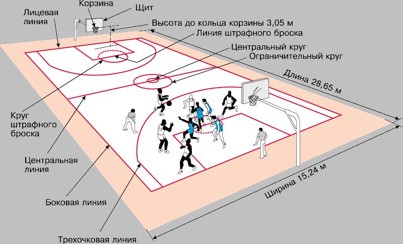 Разметка баскетбольная