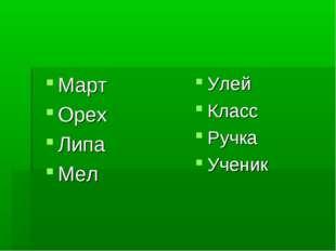 Март Орех Липа Мел Улей Класс Ручка Ученик