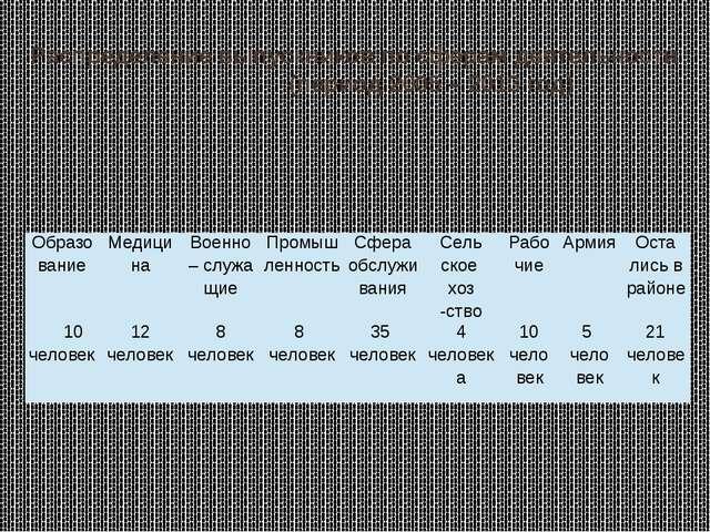Распределение выпускников по сферам деятельности (период 2005 – 2013 год) Обр...