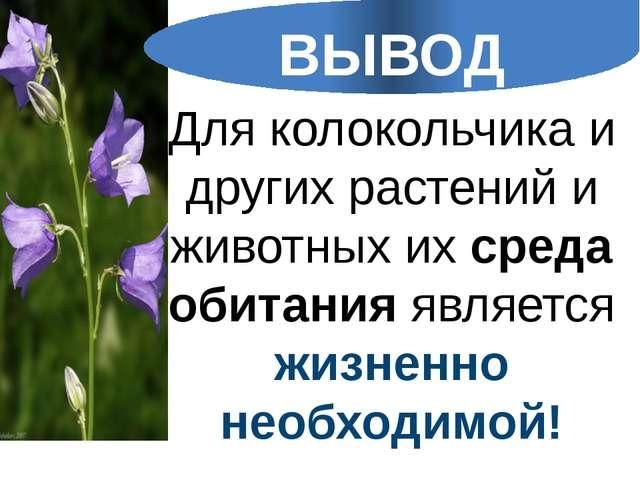Для колокольчика и других растений и животных их среда обитания является жизн...