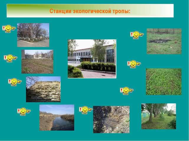 Станции экологической тропы: