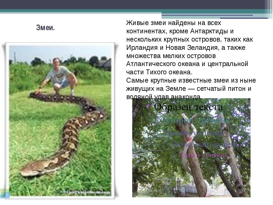 Змеи. Живые змеи найдены на всех континентах, кроме Антарктиды и нескольких к...