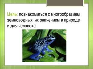 Цель: познакомиться с многообразием земноводных, их значением в природе и для