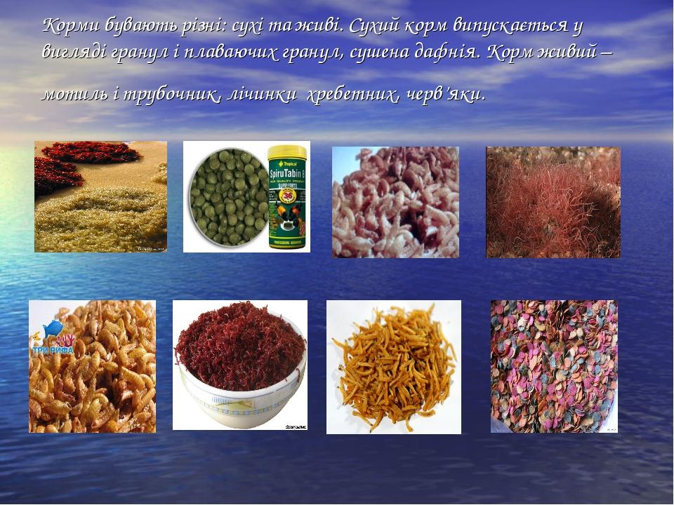 Корми бувають різні: сухі та живі. Сухий корм випускається у вигляді гранул і...