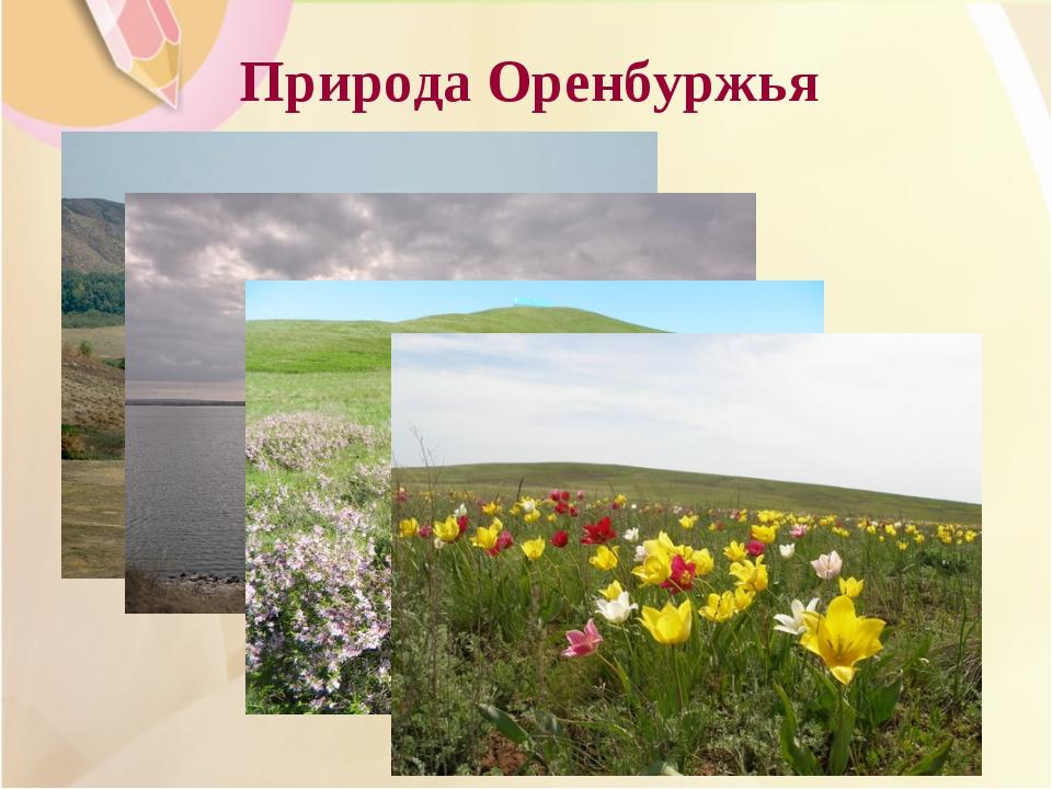 Природа Оренбуржья