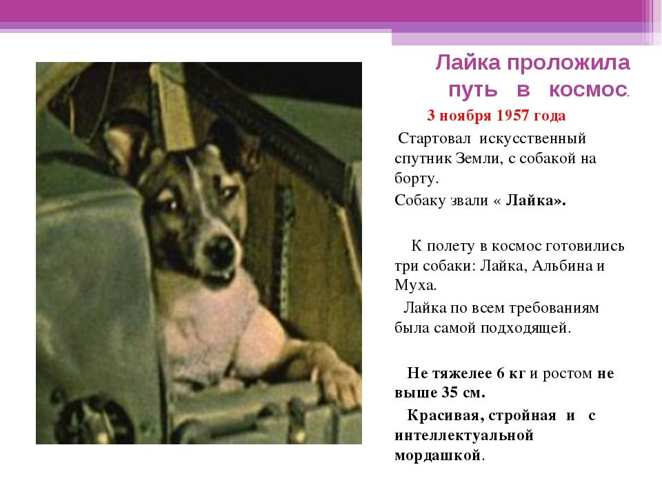 3 ноября 1957 года Стартовал искусственный спутник Земли, с собакой на борту...