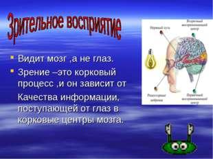 Видит мозг ,а не глаз. Зрение –это корковый процесс ,и он зависит от Качеств