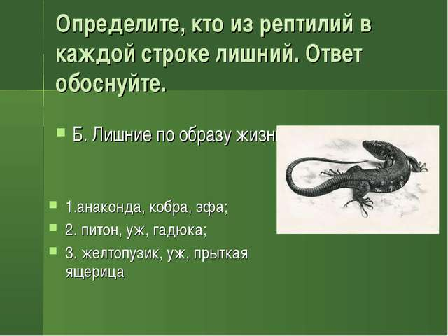 Определите, кто из рептилий в каждой строке лишний. Ответ обоснуйте. 1.анакон...