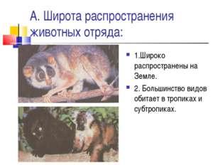 А. Широта распространения животных отряда: 1.Широко распространены на Земле.