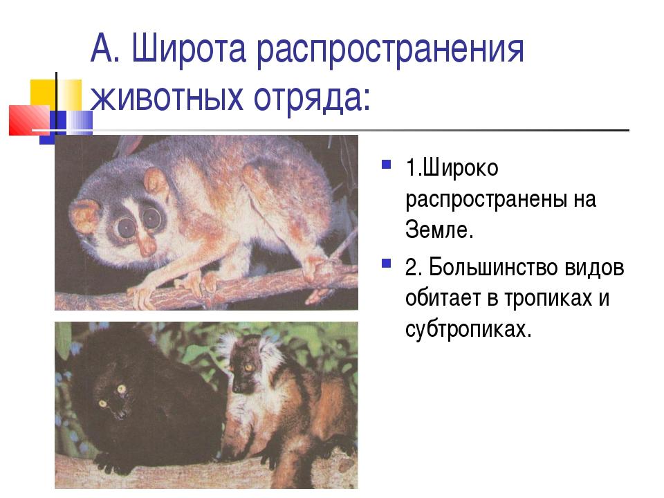 А. Широта распространения животных отряда: 1.Широко распространены на Земле....