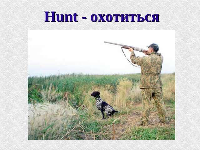 Hunt - охотиться