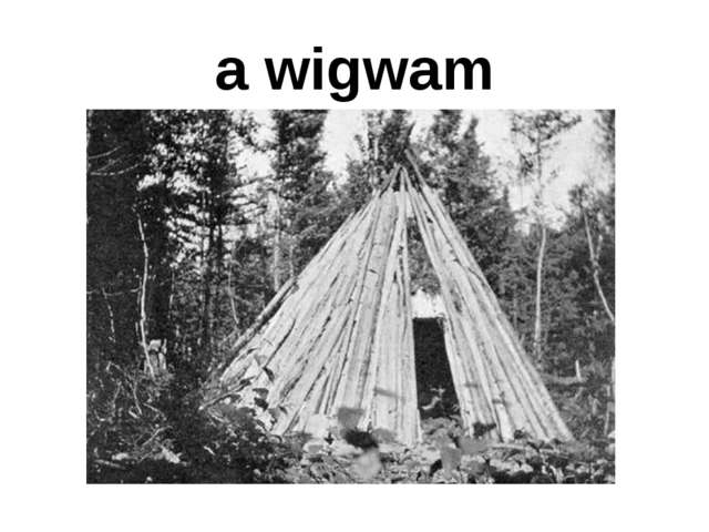 a wigwam