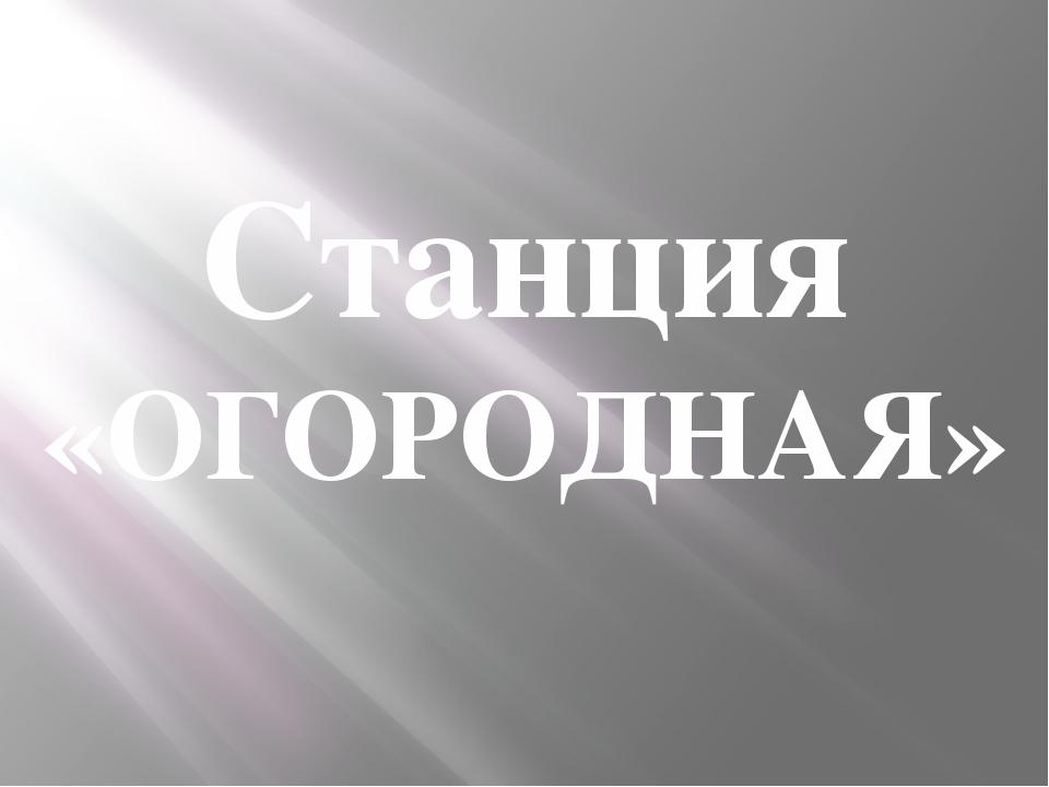 Станция «ОГОРОДНАЯ»