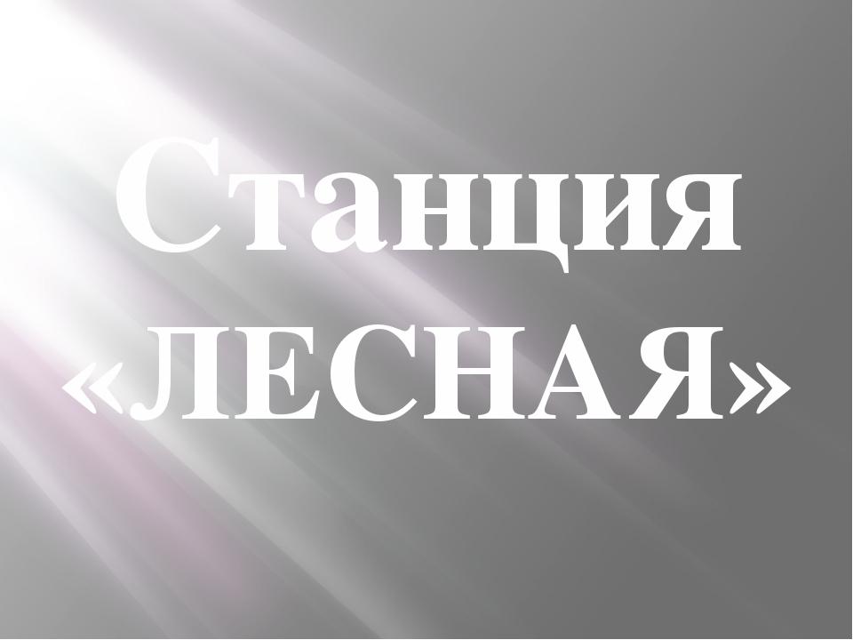 Станция «ЛЕСНАЯ»