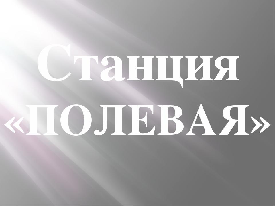 Станция «ПОЛЕВАЯ»