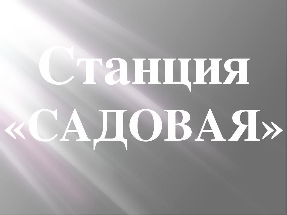 Станция «САДОВАЯ»