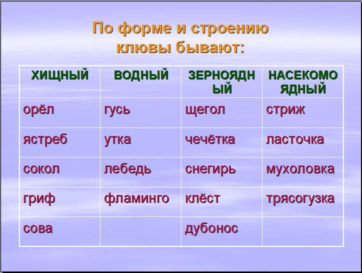 hello_html_295876ba.jpg