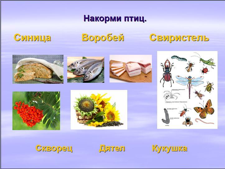 hello_html_35166098.jpg