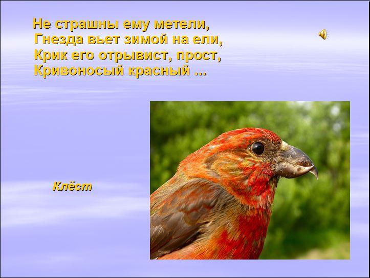 hello_html_68497001.jpg