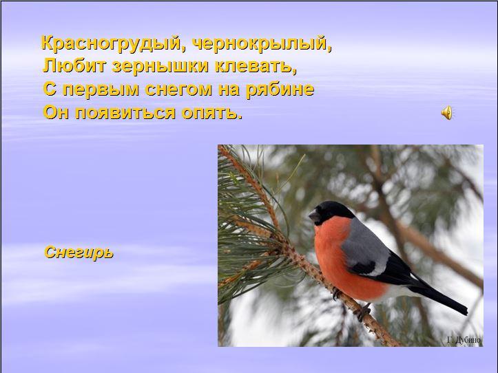 hello_html_m2431ba18.jpg