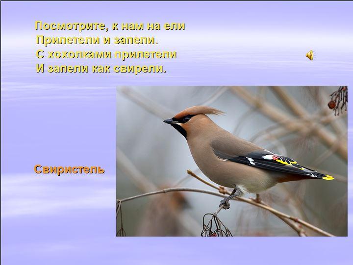 hello_html_m32e97f14.jpg