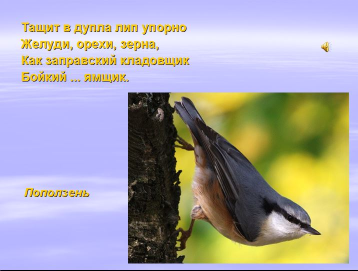 hello_html_m43428721.jpg